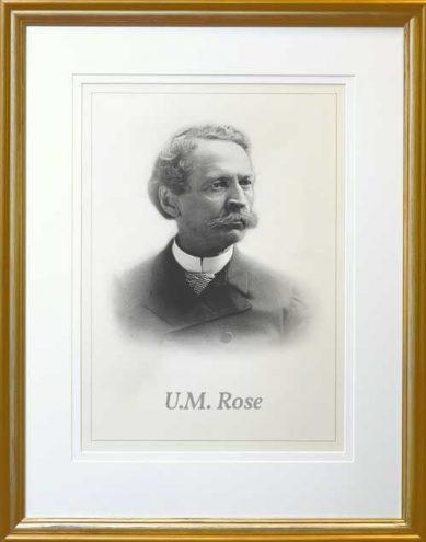 U.M Rose Picture